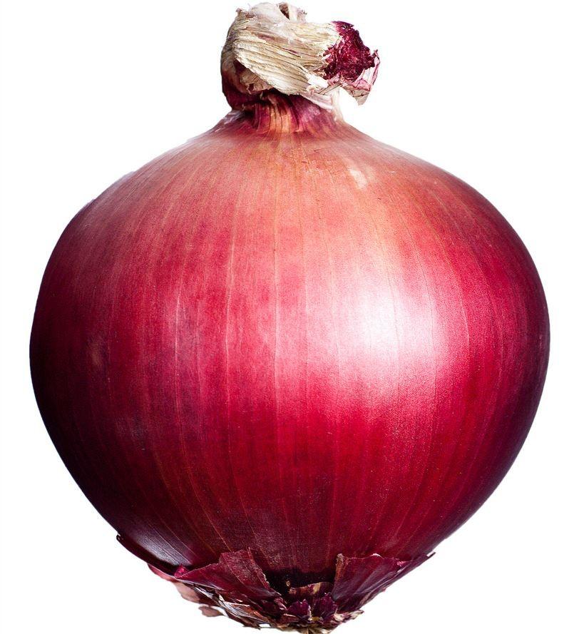 Imagen de una cebolla
