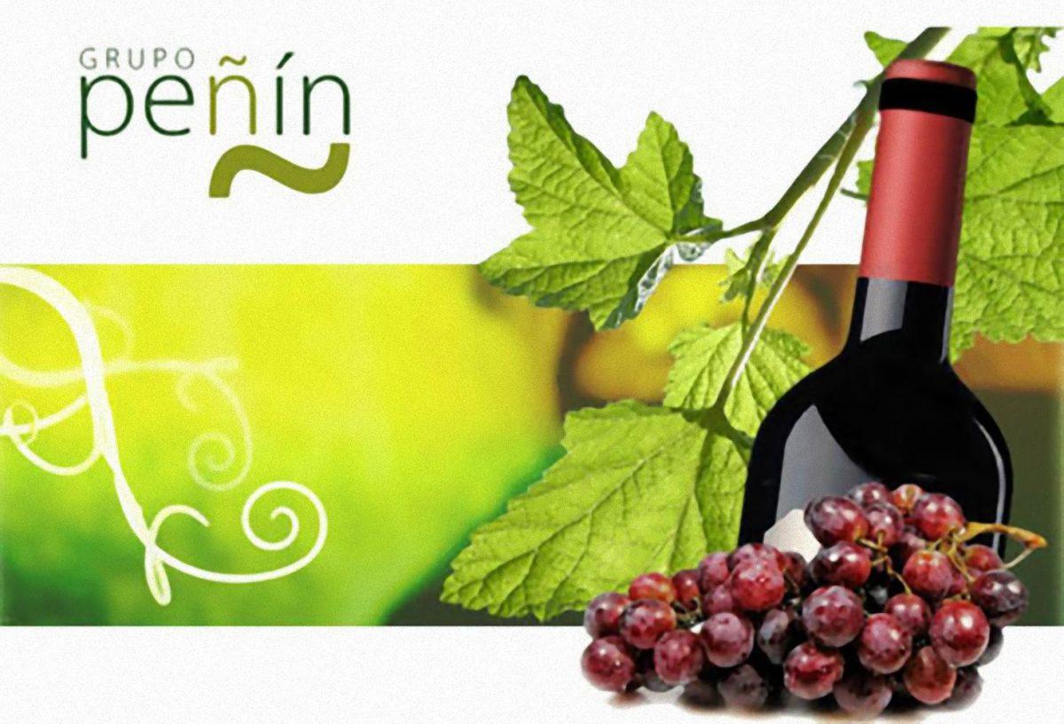 Guia Peñin de los vinos de España 2007