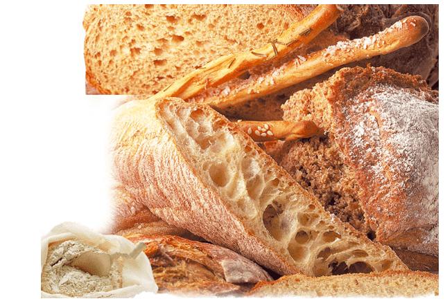 Monda, primer pan ecológico de España