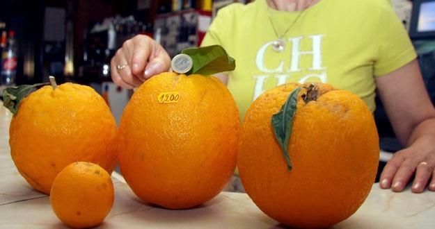 Naranjas de un 1 kilo y 200 gramos