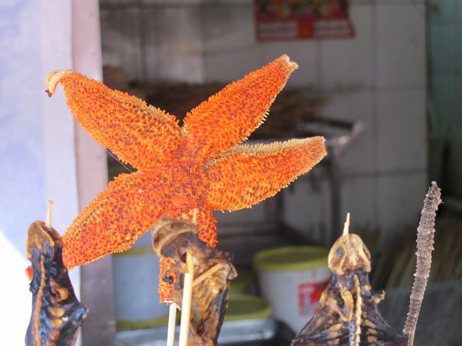 Estrella de mar frita