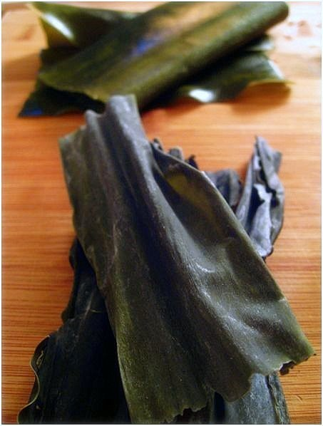 Alga Kombu, delicado sabor a mar (4)