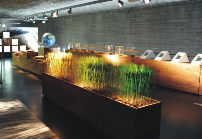 Museo del Pan de Mayorga, Valladolid