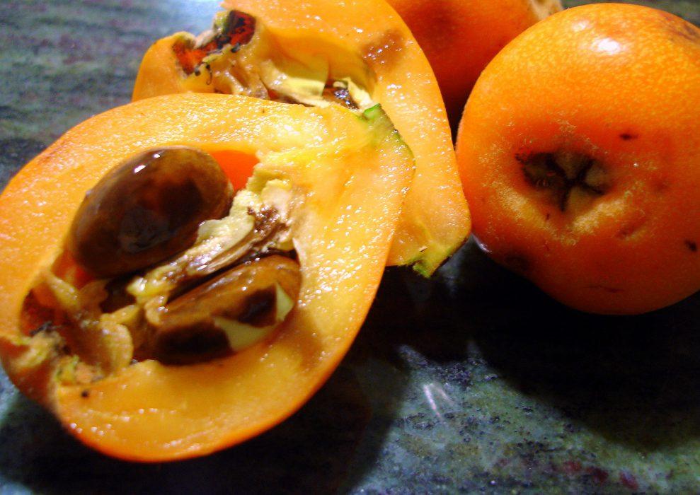 El Níspero una Fruta de Temporada, sana y sabrosa