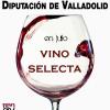 """""""Vinos Selecta"""" en el Museo del Vino Provincial de Valladolid"""