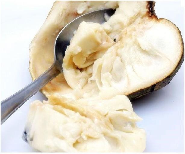 Chirimoya, una deliciosa fruta 1