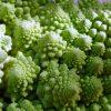 Una de las verduras más llamativas que podemos encontrar en el mercado es el Romanescu