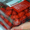 Fresonline, fresas