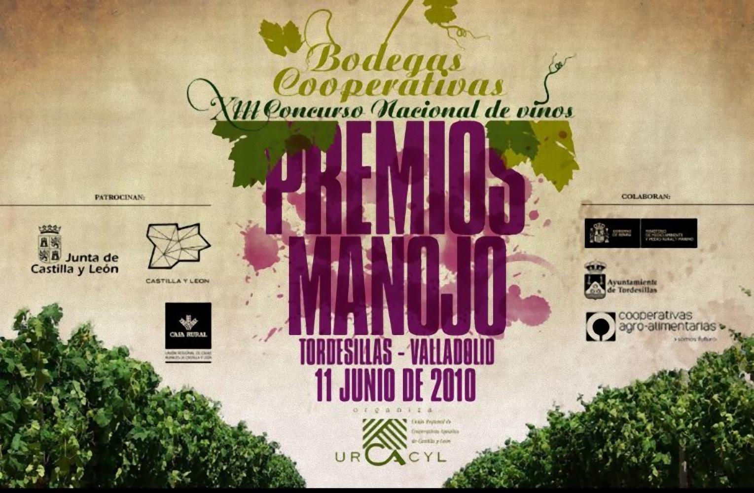 Premios Manojo 2010