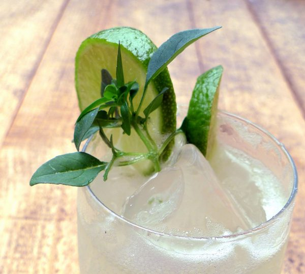 Coctel de ginebra, zumo de lima y limón con hojas de albahaca