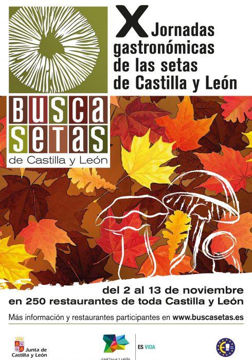 Cartel Buscasetas 2011
