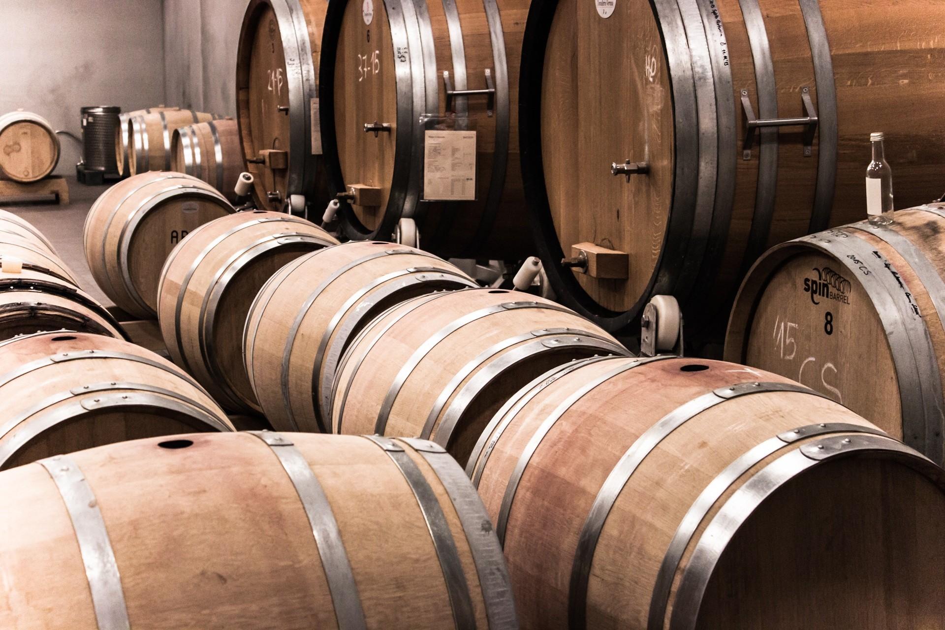 arricas de vino en bodega