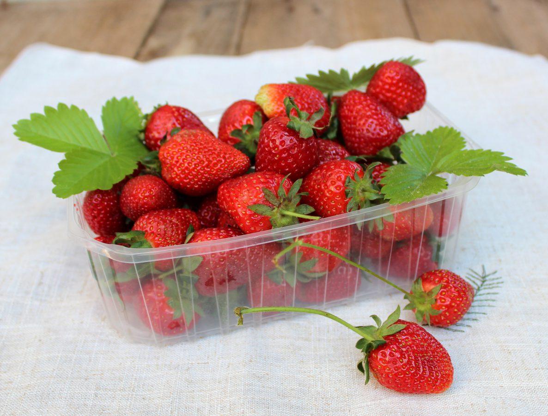 Fresas de temporada