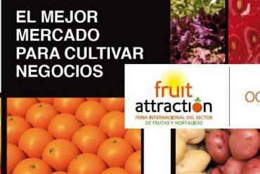 Fruit Fusión 2012