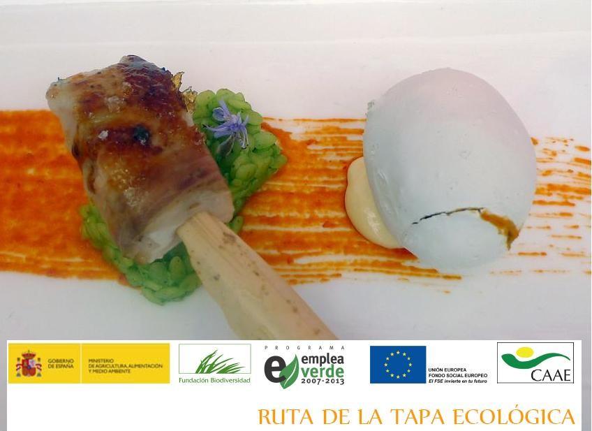 ruta de la tapa ecologica 2012