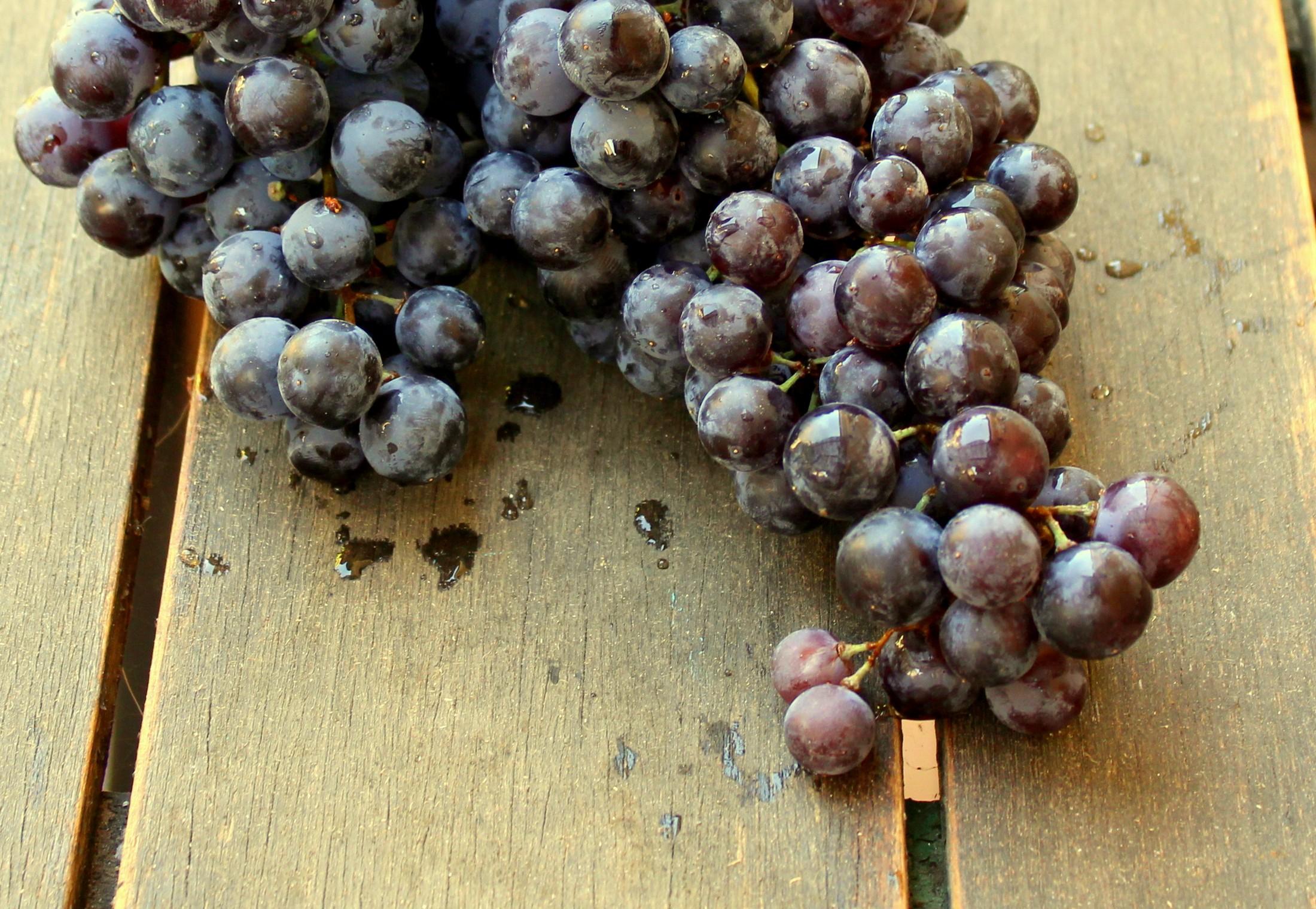 Uvas negras-1