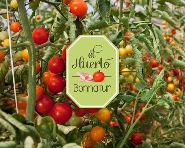Tomates de verdad, tomates con sabor Bonnatur de Argal