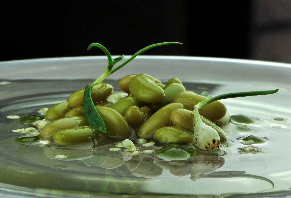 Iago Castrillon - Verdinas verde con toques anisados (2)
