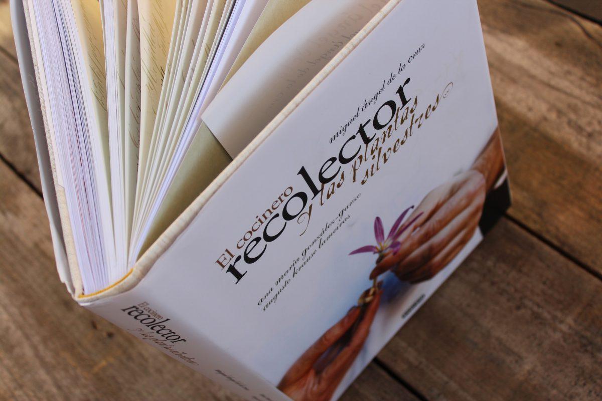 Libro de Miguel Angel de la Cruz
