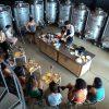 Vivid: enoturismo en la Costa Brava