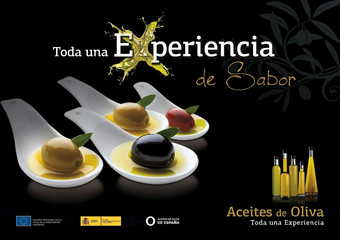 Experiencias Aceites de Oliva de España