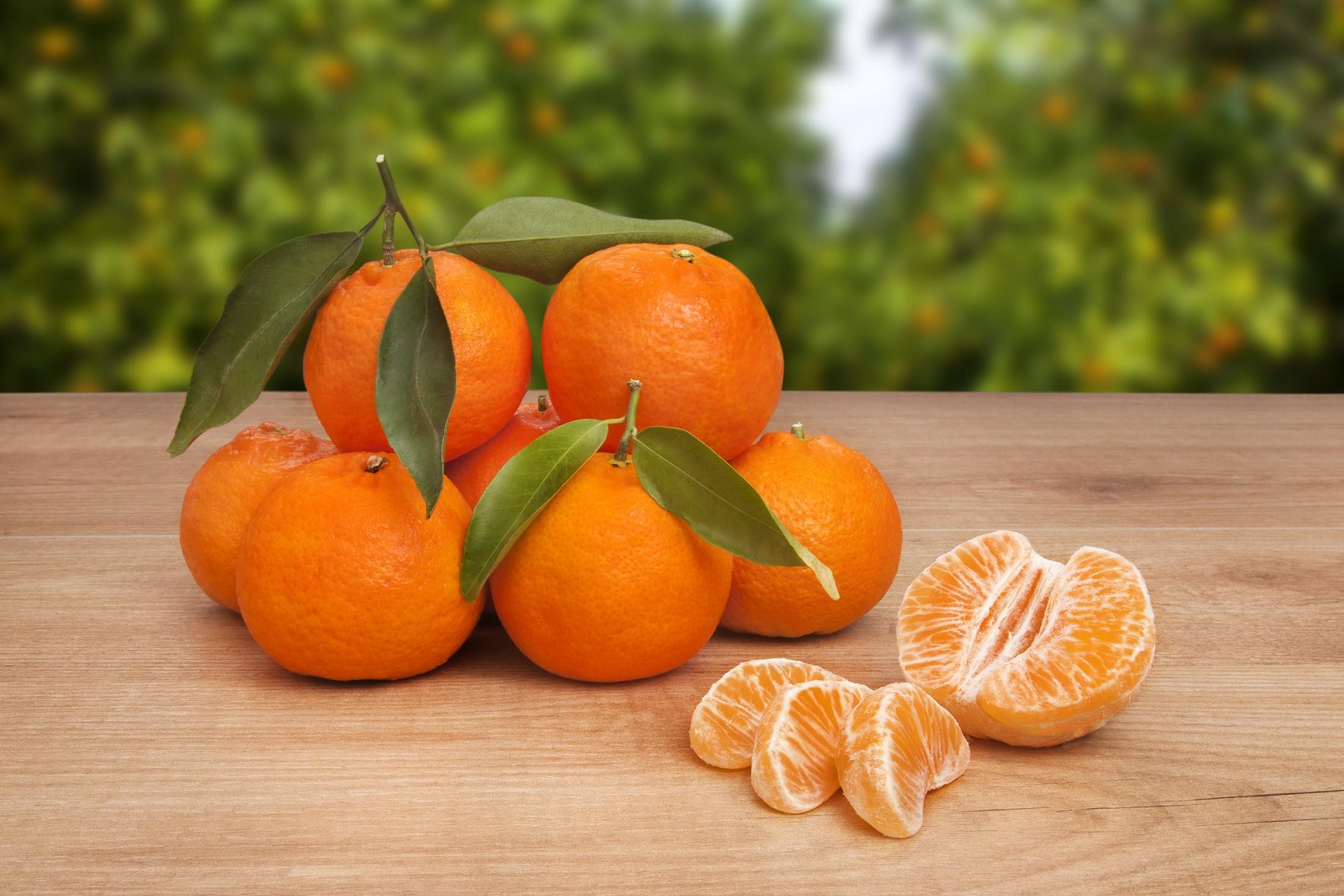 Mandarinas Clemenules - naranjaslaviejaalqueria.com