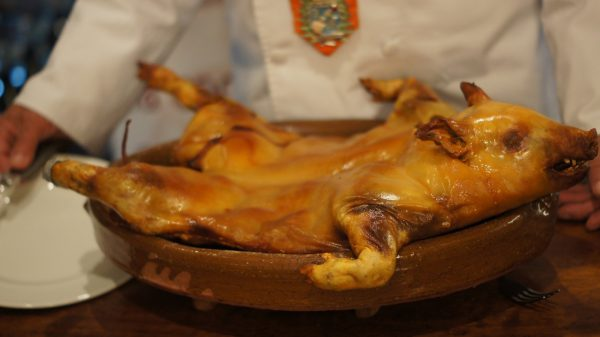 Cochinillo asado, receta e ingredientes