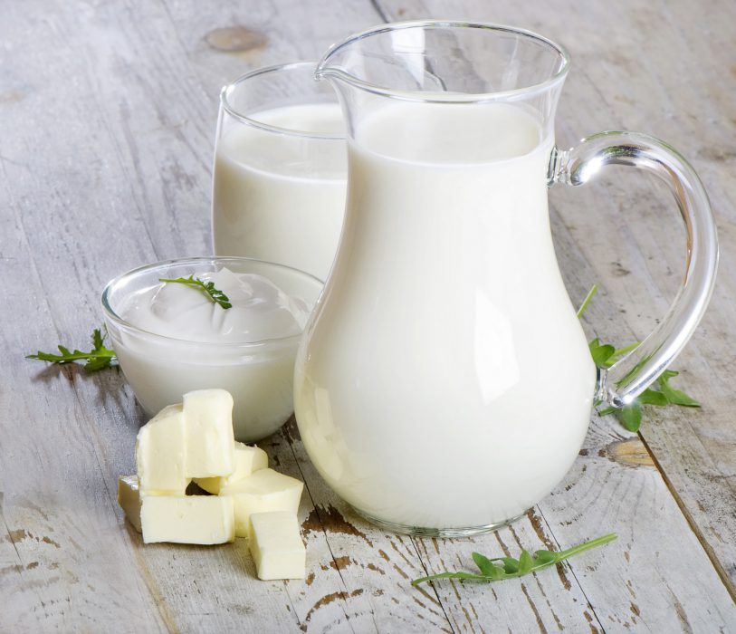 Leche Productos lacteos