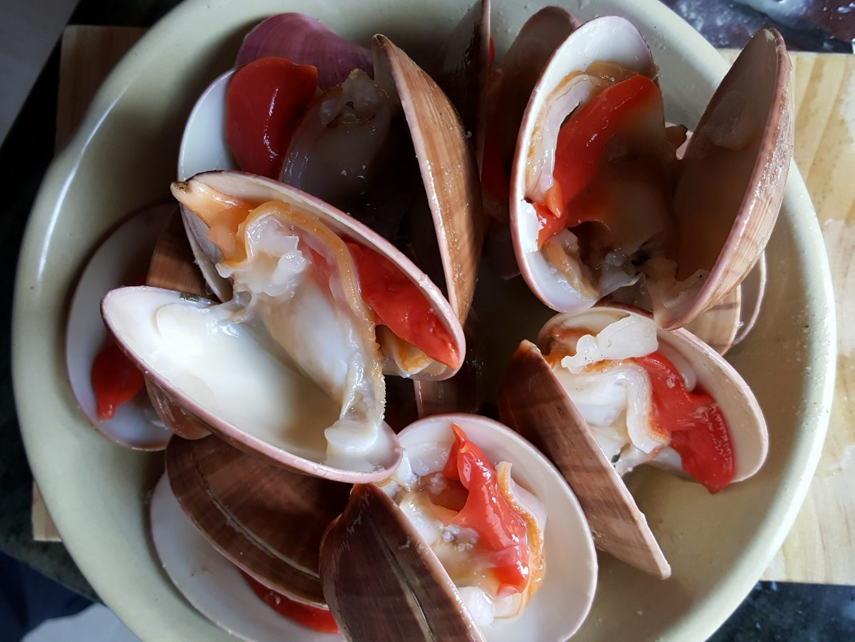 Como limpiar almejas de concha fina 2