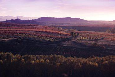 Bodegas Vivanco - Briones - La Rioja