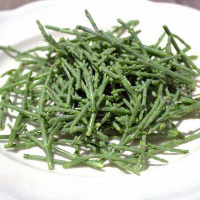 Salicornia o esparrago de mar