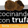 Concurso Internacional de Cocina con Trufa en Soria