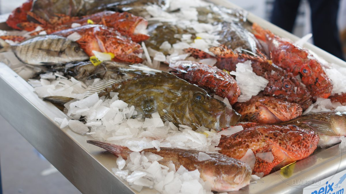 Peix Nostrum Ibiza - Pescadores profesionales de la Isla de Ibiza