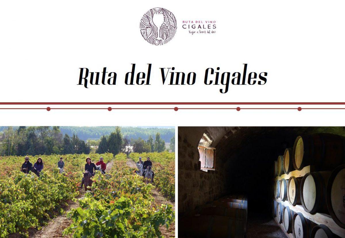 ruta del vino cigales - dia mundial del vino
